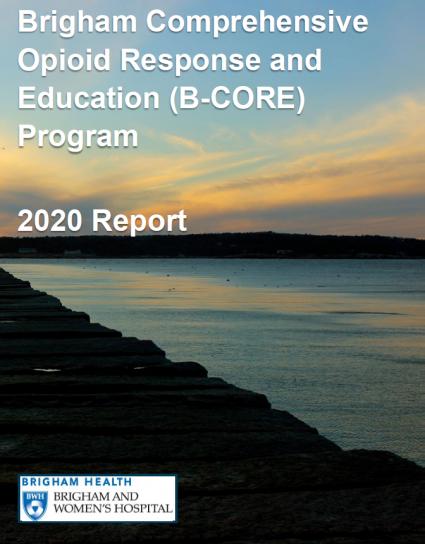 2020 Report image